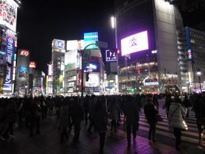 Die Shibuya-Kreuzung bei Nacht: Im Tsutaya befindet sich besagter Starbucks :)