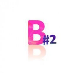 Blogtour b2.JPG
